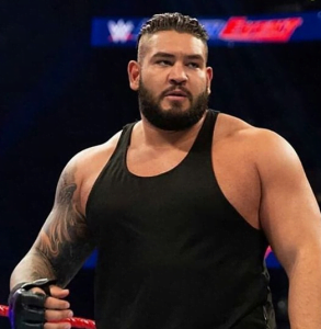WWE Updates on RAW superstar possibly injured during a match - Sports Info Now