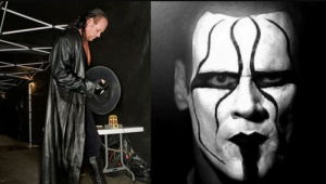 WWE Rumors Roundup - WWE News and Rumors on Undertaker talk about Undertaker vs Sting match - Sports Info Now