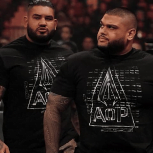 WWE Spoilers - Authors of Pain WWE release update - Sports Info Now